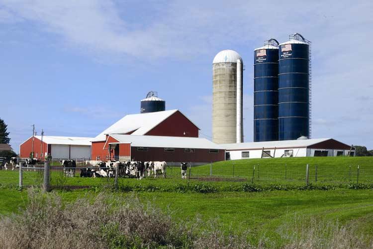 """Wisconsin """"The Dairyland of America"""" ist das Herz der amerikanischen Milchviehhaltung und der Stammsitz von Rock River Laboratory, Inc."""
