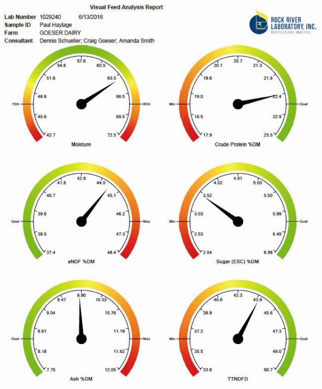 Der visuelle Report für die Nährstoffanalyse hilft, wie bei einer Ampel,schnell zu wissen, wo man steht.