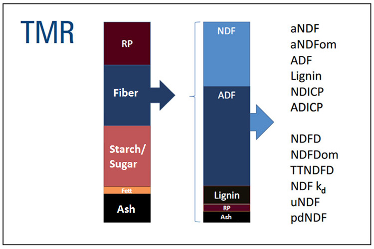 Composition of fiber in TMRs